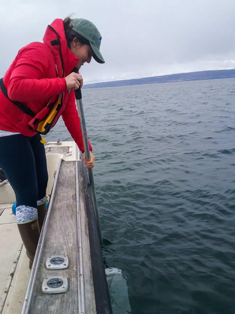 Photo of staff member collecting phytoplankton