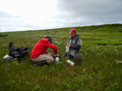 Picture of ACCS employees in the field conducting research