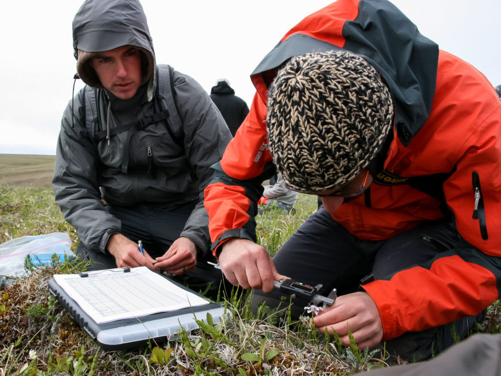 Picture of ACCS researchers in the field conducting studies
