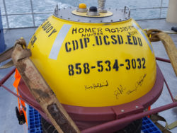 Photo of System-Wide Monitoring Program buoy